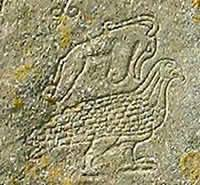 Pictish beastie.jpg